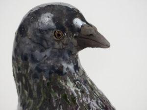 Pigeon Lahore bleu détail de la tête - Pièces de Nadine JANIN