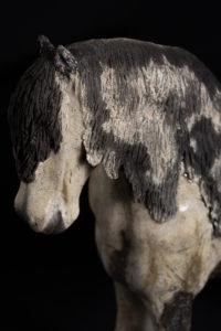 cheval percheron