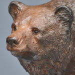 Ours- Grizzli